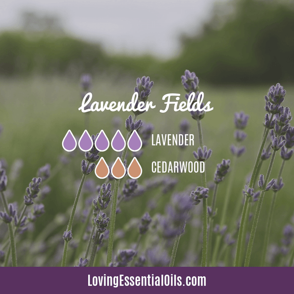Lavender Diffuser Blends - Promtoe Comfort & Oily Wellness by Loving Essential Oils | Lavender Fields with lavender and cedarwood essential oils