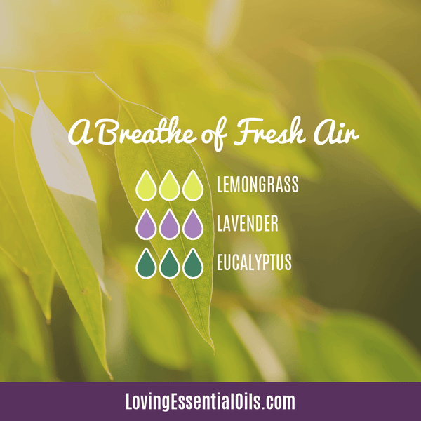 Lemongrass Diffuser Blends - Ease Stress & Raise Spirits! by Loving Essential Oils | A Breathe of Fresh Air with lemongrass, lavender and eucalyptus
