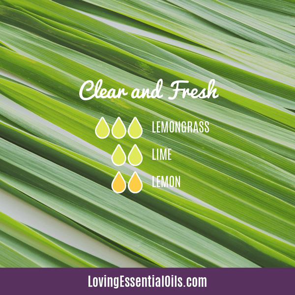 Lemongrass Diffuser Blends - Ease Stress & Raise Spirits! by Loving Essential Oils | Clear and Fresh with lemongrass, lime and lemon