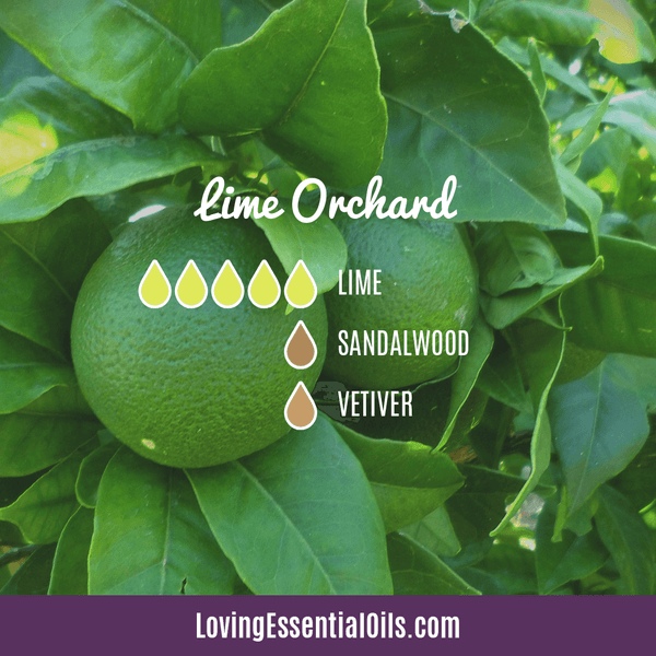 Lime Diffuser Blends - Refresh & Energize Your Day! by Loving Essential Oils | Lime Orchard with lime, sandalwood, and vetiver