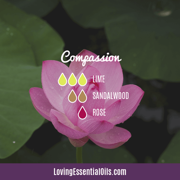 Essential Oil Diffuser Blend for Compassion with Lime, Sandalwood, and Rose by Loving Essential Oils