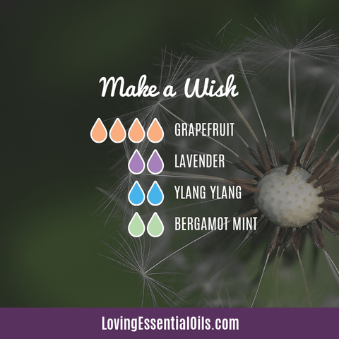 Mint Bergamot Diffuser Blend - Make a Wish by Loving Essential Oils with grapefruit, lavender, and ylang ylang