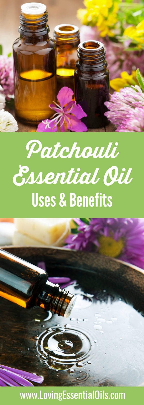 Best Patchouli Oil Uses & Benefits by Loving Essential Oils