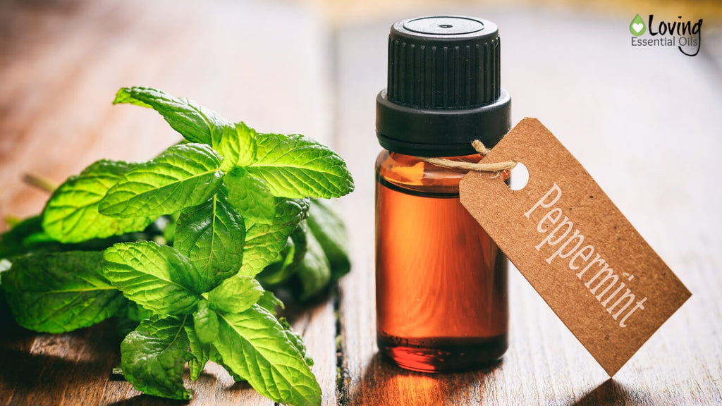Peppermint Air Freshener - 5 Minty Essential Oil Recipe Blends by Loving Essential Oils