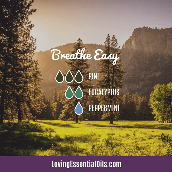 Pine Diffuser Blend - Breathe Easy by Loving Essential Oils with eucalyptus and peppermint