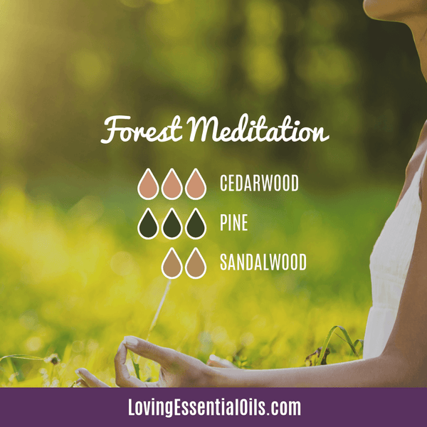 Pine Diffuser Recipe - Forest Meditation by Loving Essential Oils with sandalwood and cedarwood