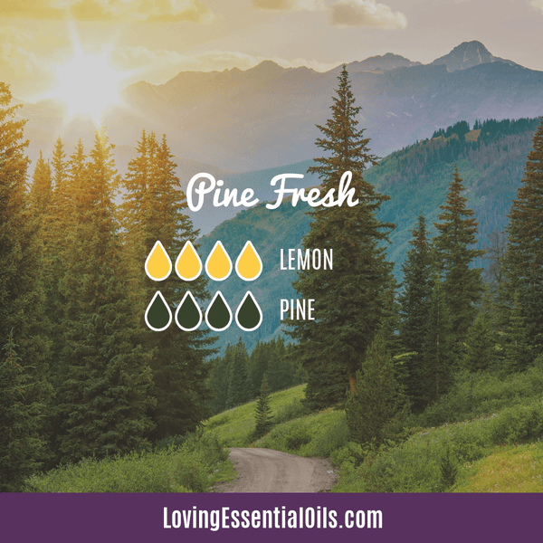 Pine Fresh Essential Oil Diffuser Blend by Loving Essential Oils with pine and lemon