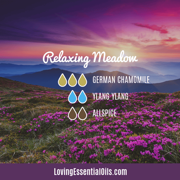 Relaxing Meadow Diffuser Blend with German Chamomile by Loving Essential Oils with ylang ylang and all spice essential oil
