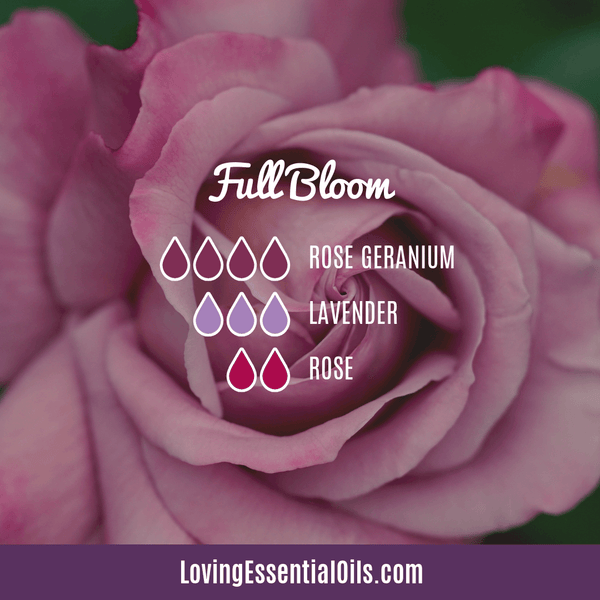 Rose Absolute Diffuser Blend - Full Bloom by Loving Essential Oils
