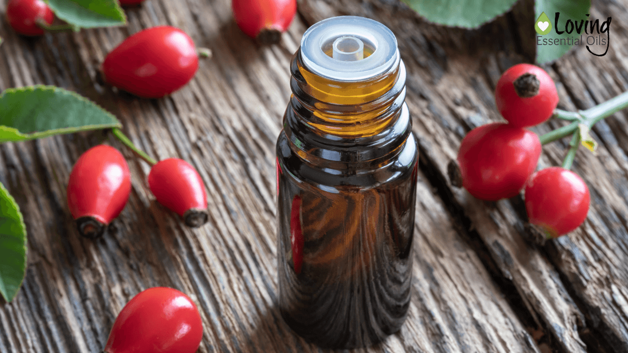 Rosehip Essential Oil - Is There Such An Oil? by Loving Essential Oils