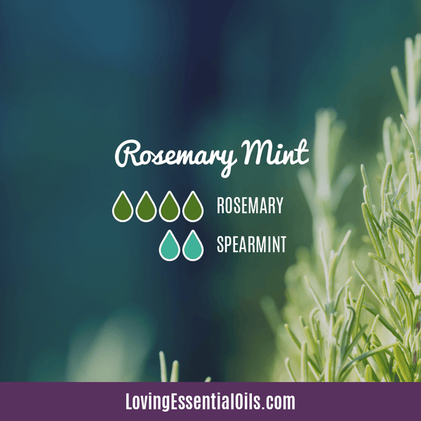 Rosemary Essential Oil Diffuser Blends - Rosemary Mint with spearmint essential oil