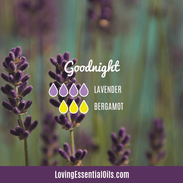 Sleep Diffuser Blend - Goodnight by Loving Essential Oils with lavender and bergamot