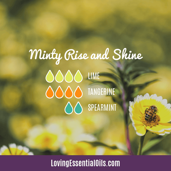 Spearmint Diffuser Blend Recipe - Minty Rise and Shine by Loving Essential Oils with lime, tangerine and spearmint essential oil