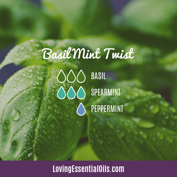 Spearmint Diffuser Blends - Minty Clean & Cool by Loving Essential Oils | Basil Mint Twist with basil, spearmint, and peppermint