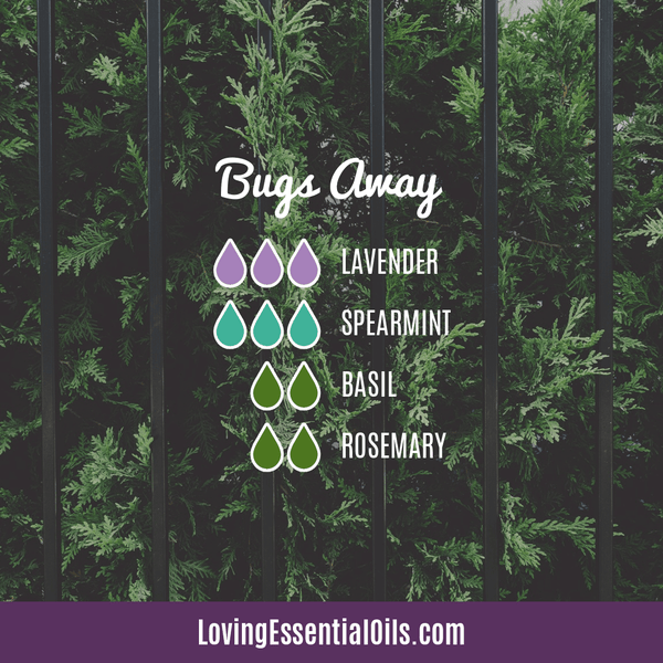 Spearmint Diffuser Blends - Minty Clean & Cool by Loving Essential Oils | Bugs Away with lavender, spearmint, basil and rosemary