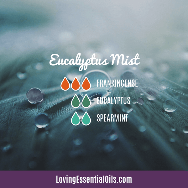 Spearmint Diffuser Blends - Minty Clean & Cool by Loving Essential Oils | Eucalyptus Mist with frankincense, eucalyptus, and spearmint