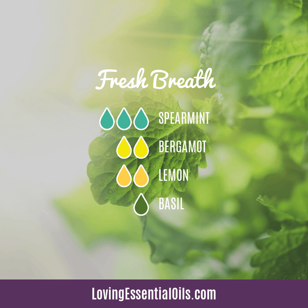 Spearmint Diffuser Blends - Minty Clean & Cool by Loving Essential Oils | Fresh Breath with spearmint, bergamot, lemon, and basil