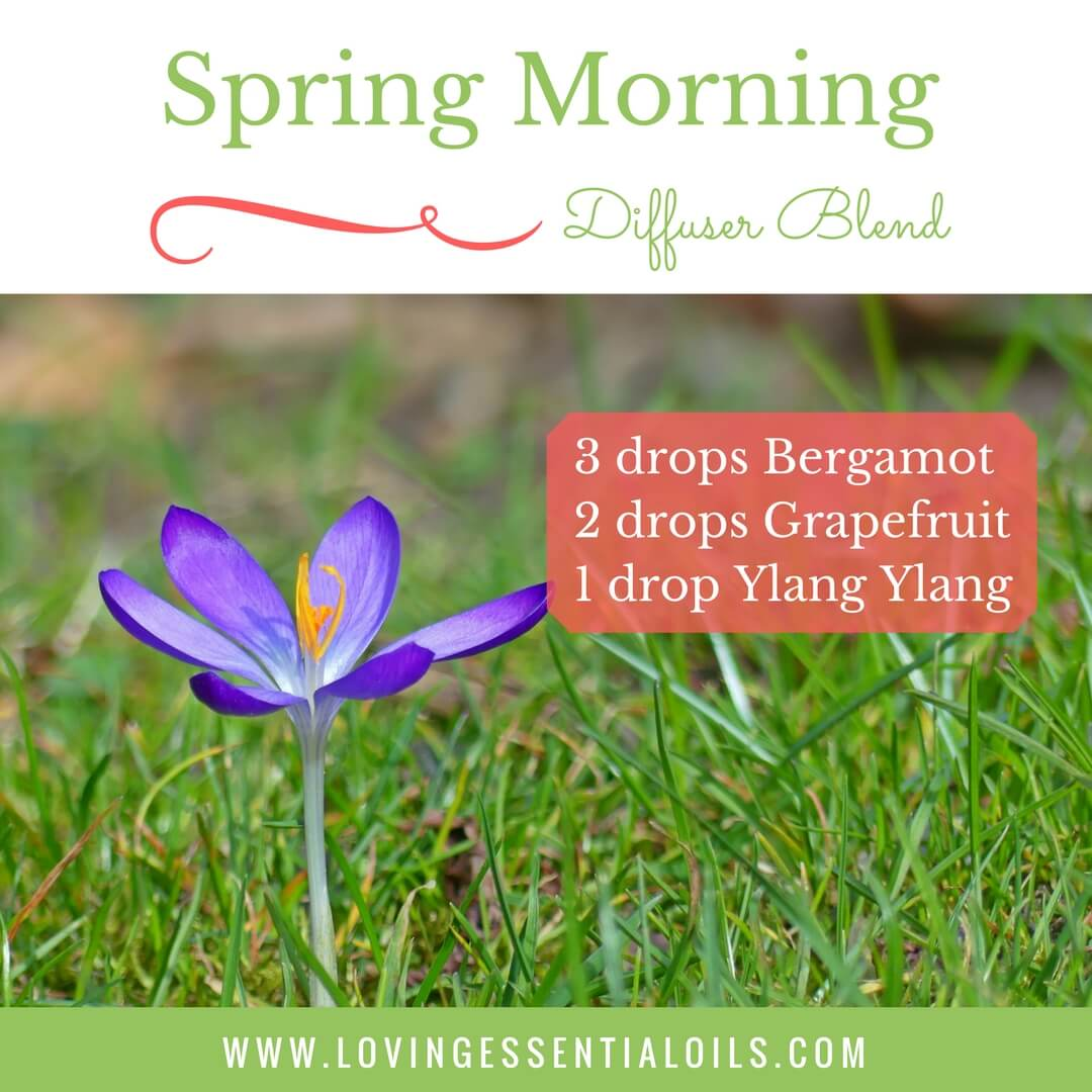 Essential Oils For Spring With 10 Diffuser Blend Recipes