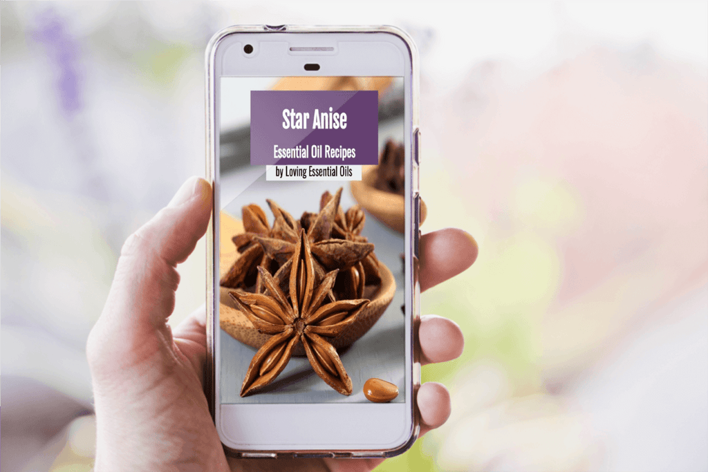 DIY Star Anise Essential Oil Guide by Loving Essential Oils