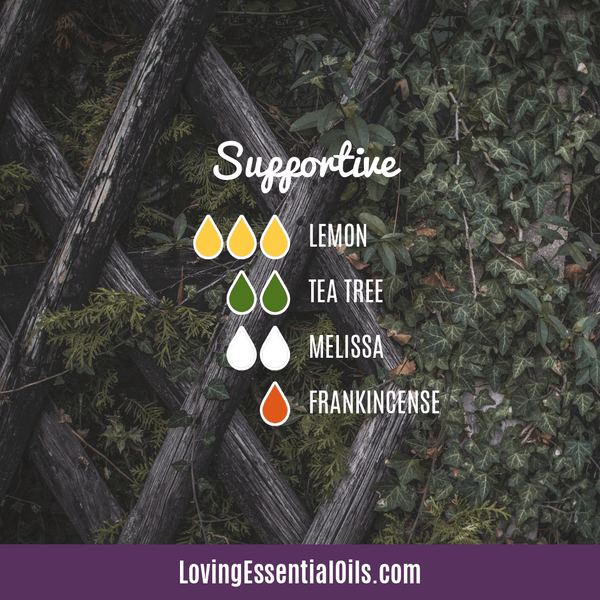 Supportive Essential Oil Diffuser Blend for Cold Sores by Loving Essential Oils