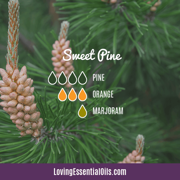 Sweet Orange Diffuser Blend - Sweet Pine