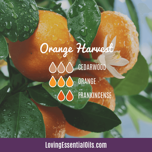 Sweet Orange Essential Oil Diffuser Blends - Orange Harvest