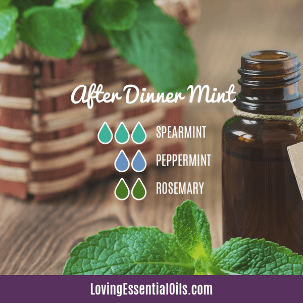 Holiday Diffuser Blends - Celebrate & Share Your Gratitude! by Loving Essential Oils | After Dinner Mint with spearmint, peppermint, and rosemary