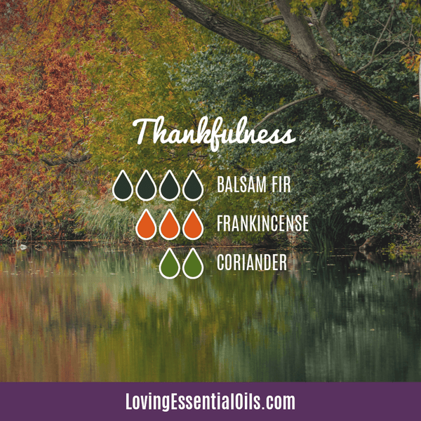 Diffuser Blends for Giving Thanks - Celebrate & Share Your Gratitude! by Loving Essential Oils | Thankfulness with balsam fir, frankincense, and coriander