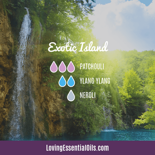Tropical Essential Oils with Diffuser Blends by Loving Essential Oils | Exotic Island with patchouli, ylang ylang, and neroli