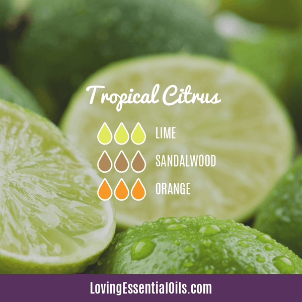 Tropical Essential Oils with Diffuser Blends by Loving Essential Oils | Tropical Citrus with lime, sandalwood, and orange