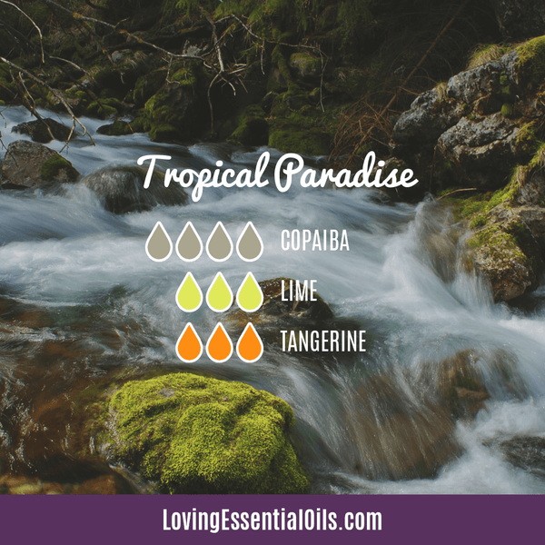 Tropical Essential Oils with Diffuser Blends by Loving Essential Oils | Tropical Paradise with copaiba, lime, and tangerine