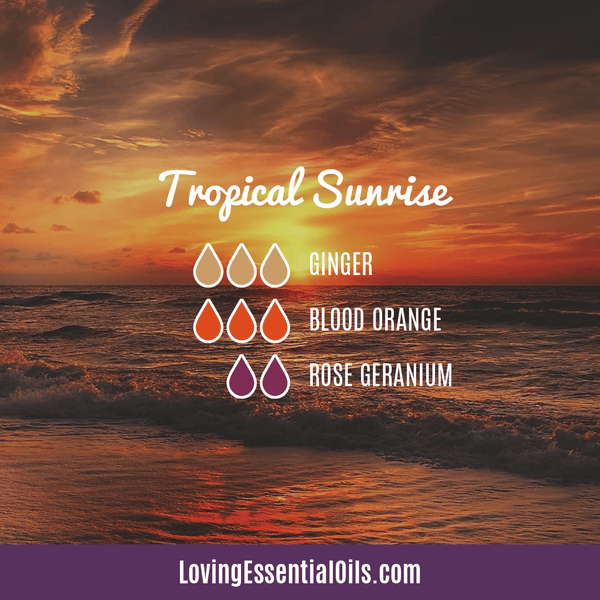 Tropical Essential Oils with Diffuser Blends by Loving Essential Oils | Tropical Sunrise with ginger, blood orange, and rose geranium