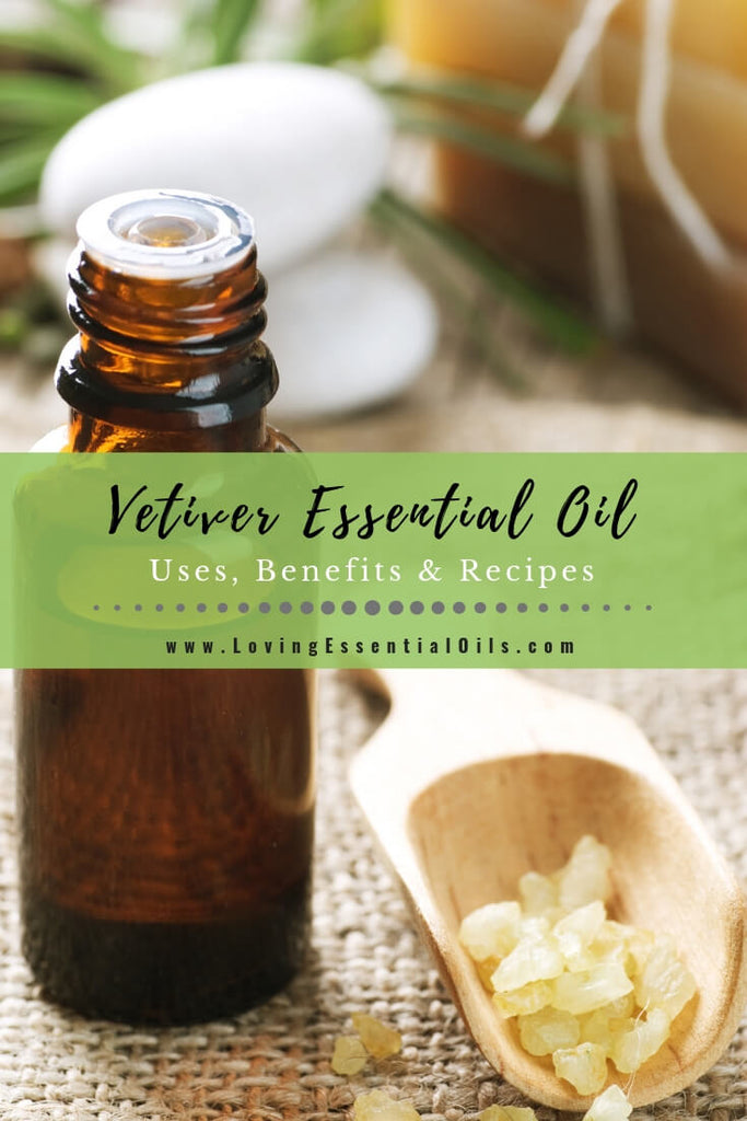 Vetiver Essential Oil Uses, Benefits & Recipes - EO Spotlight by Loving Essential Oils