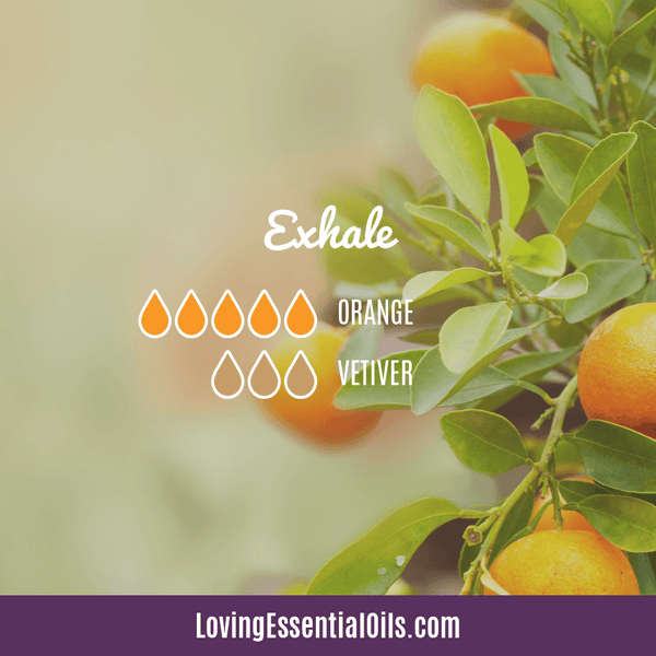 Vetiver Diffuser Blends - Clear Mind Chatter & Relax! by Loving Essential Oils | Exhale with orange and vetiver oil