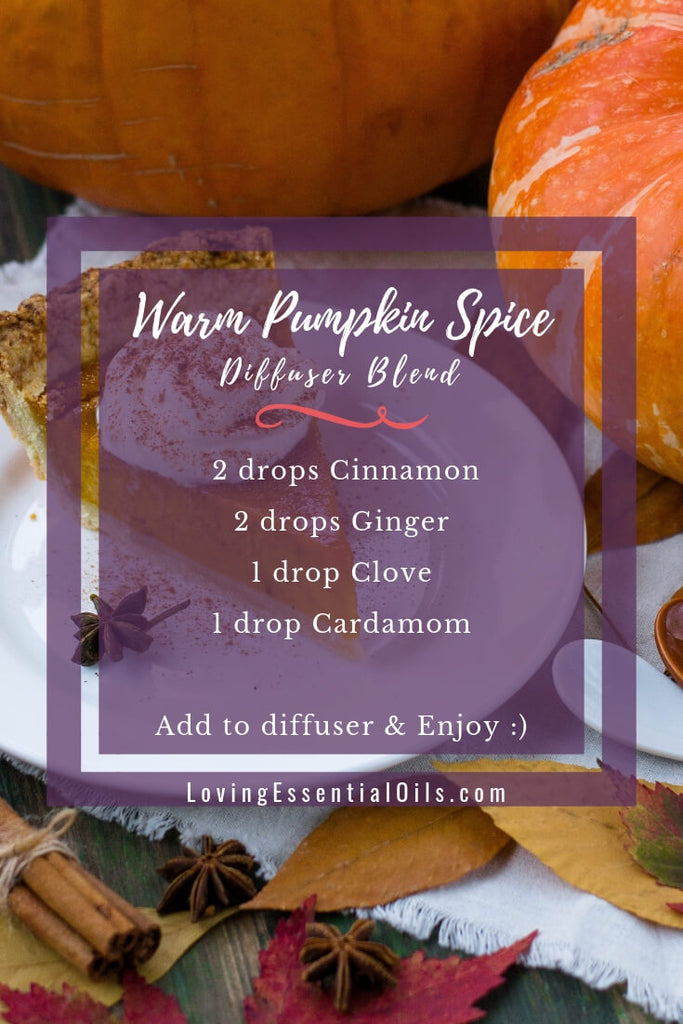 Warm Pumpkin Spice - Fall Essential Oil Diffuser Blends with cinnamon, ginger, clove and cardamom