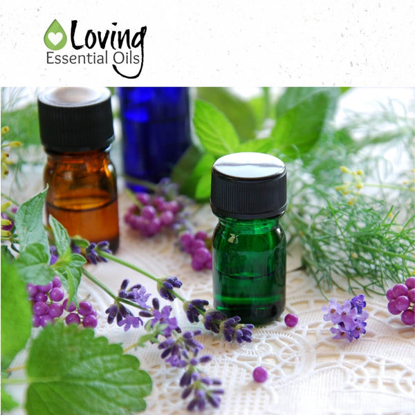 Where to buy essential oils cheap? by Loving Essential Oils   Essential oils don't have to be expensive, find out the best affordable essential oils to buy!
