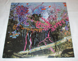 ANIMAL COLLECTIVE SIGNED HERE COMES THE INDIAN VINYL RECORD