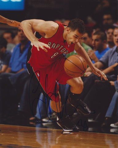 JOSE CALDERON SIGNED TORONTO RAPTORS 8X10 PHOTO