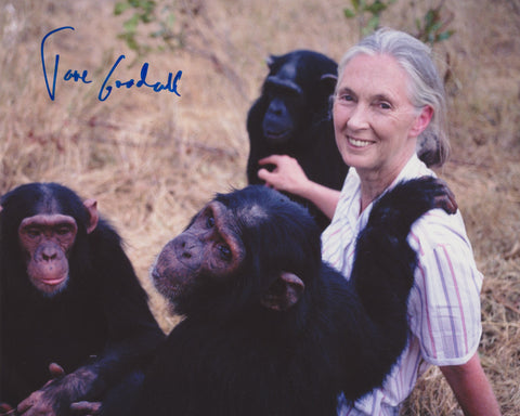 DR. JANE GOODALL SIGNED 8X10 PHOTO 3
