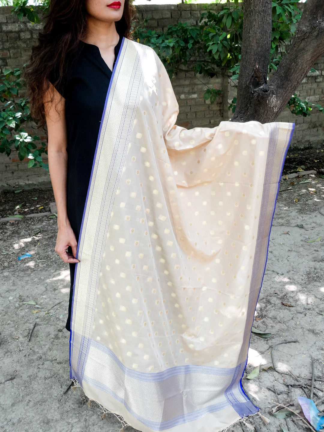 Banarasi Art Silk Dupatta-Beige with blue border