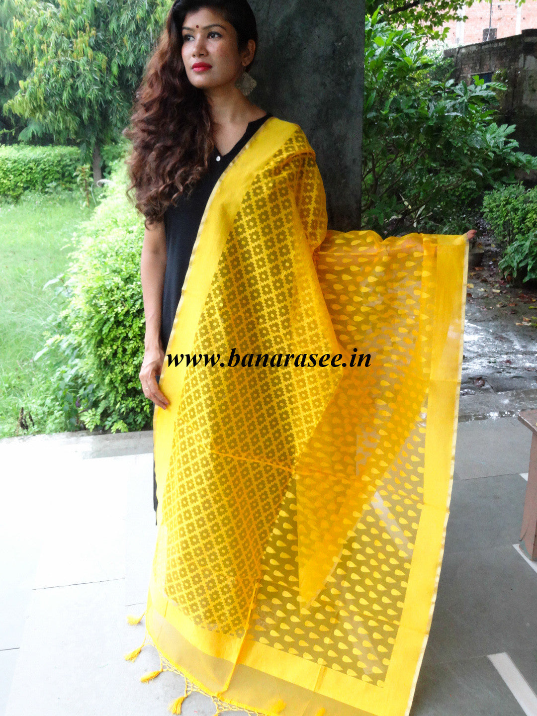 Banarasee/ Banarasi Net patterned Dupatta-Yellow