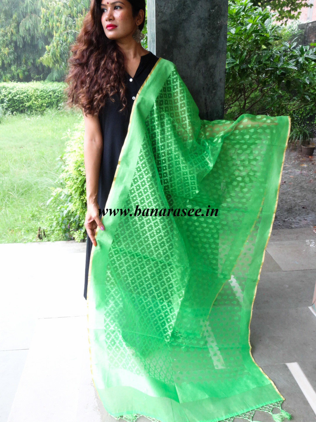 Banarasee/ Banarasi Net patterned Dupatta-Light Green