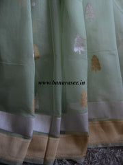 Banarasee/Banarasee Pure Handloom Silk Cotton Saree With Golden & Silver Border-Light Green