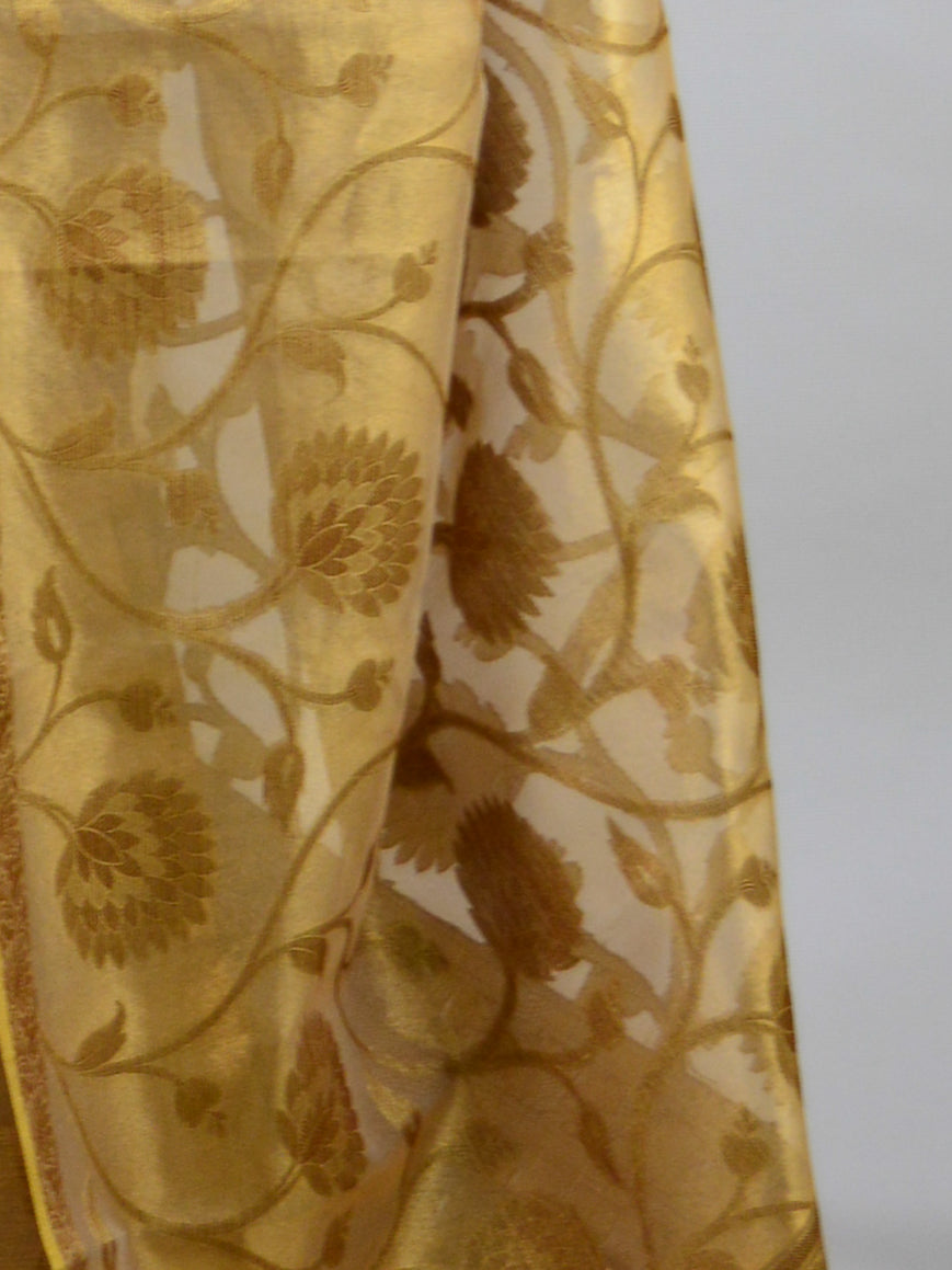 Banarasee Handwoven Tissue Jaal Work Saree-Amber Gold