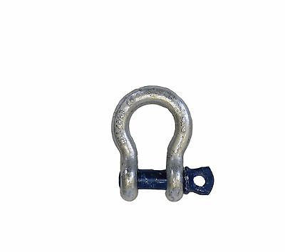 6.5 Ton Bow Shackle Screw Pin Tested Boat - Chain Care Lifting Services Ltd  - 1