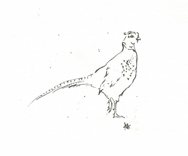 Pheasant by Annabel Allison.  £25 at The Prints Gallery.  Simple black and white line drawing of a pheasant