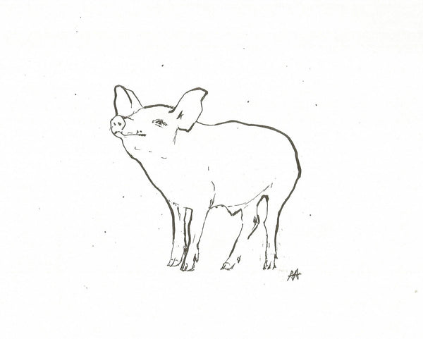 Piglet by Annabel Allison.  £25 at The Prints Gallery.  Simple black and white line drawing of a piglet