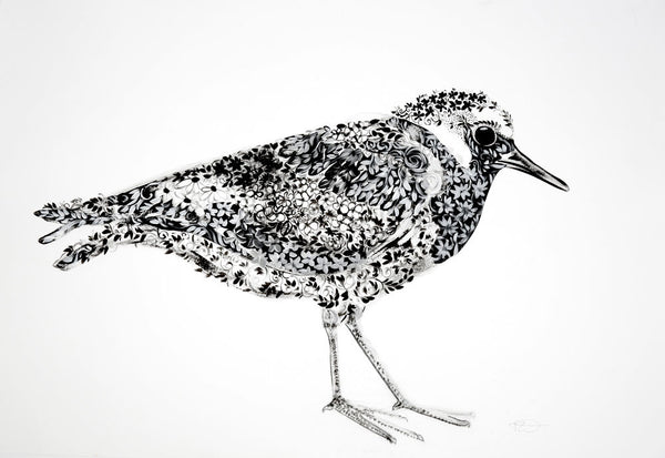 The Plover by Marissa Weatherhead at The Prints Gallery.  One of a series of black and white prints of birds. £90.
