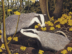 Badgers Emerge. Giclee print by Anthony Veale at The Prints Gallery