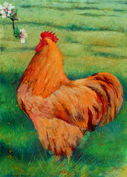 Buff Orp - mounted Giclee print by artist Xanthe Mosley. £45 at The Prints gallery.